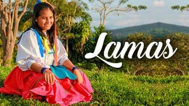 Banner Lamas